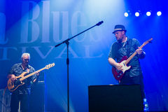 Rawa Blues Festival 2014: Shawn Holt & The Teardrops Stock Photos