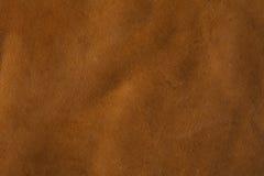 Rawhide Buffalo Leather Royalty Free Stock Image
