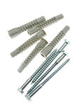 Rawlplugs and screws Stock Photography