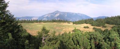 Rax Alps mountain meadow. Stock Photography