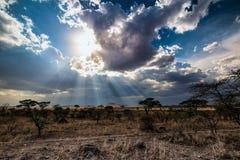 Ray av solljus bak moln royaltyfri foto