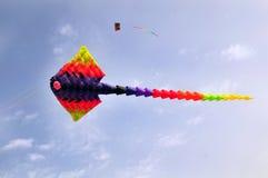 Ray-Drachen Stockfoto