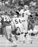 Ray Guy royaltyfria foton