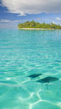 Ray in lagoon Royalty Free Stock Photos