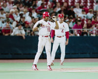 Ray Lankford St Louis Cardinals Royaltyfri Bild
