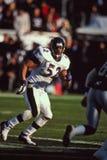 Ray Lewis Baltimore Ravens Royalty Free Stock Image
