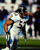 Ray Lewis Baltimore Ravens Stock Image