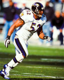 Ray Lewis Baltimore Ravens Royalty Free Stock Images