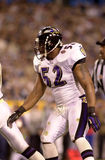Ray Lewis, Super Bowl XXXV Imagem de Stock Royalty Free