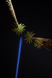 Ray of light. Bright blue beam in the sky with some palms stock photography