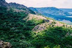 Ray of light on green forest in Hercinian Macin mountains royalty free stock photography