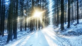 Ray of light royalty free stock images