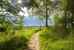 The ray of light makes the way through foliage. Of a tree. A footpath in a grass. On a footpath in the distance there are two children. On horizon dark clouds Stock Photo