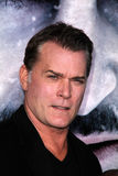 Ray Liotta Royalty Free Stock Images