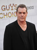 Ray Liotta Royalty Free Stock Photo