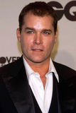 Ray Liotta Royalty Free Stock Image