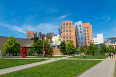Ray and Maria Stata Center on the campus of MIT Royalty Free Stock Images