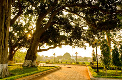 Ray. Morning sun shines through the trees in the park Buon Me Thuot, Daklak, Viet Nam royalty free stock images