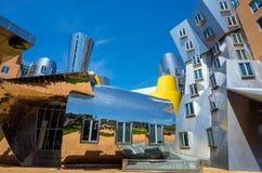 Ray och Maria Stata Center på universitetsområdet av MIT royaltyfri fotografi