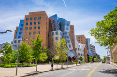 Ray Stata i Maria Ześrodkowywamy na kampusie MIT Obrazy Royalty Free
