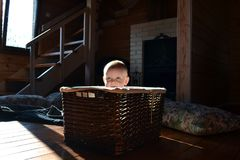 Baby in a wicker basket, indoor royalty free stock images