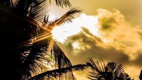 Ray van zonlicht op Caraïbisch strand Stock Foto's