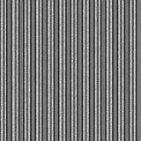 Raya negra, blanca, y gris Foto de archivo libre de regalías
