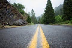 Rayas en el camino en el bosque de Oregon imagenes de archivo