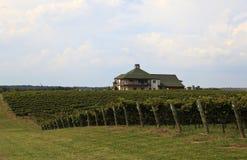 RayLen Vineyards and Winery in Mocksville North Carolina. RayLen Vineyards and Winery in Mocksville, North Carolina in September Harvest Season stock image