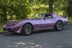 Rayo de picadura de Chevrolet Corvette Imágenes de archivo libres de regalías