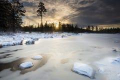 Rayo de sol del invierno Fotos de archivo libres de regalías