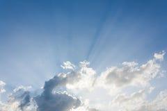 Rayo de sol por la mañana Imágenes de archivo libres de regalías