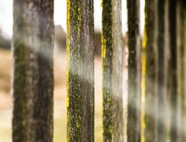 Rayon de barrière de lumière jaune vif photographie stock libre de droits