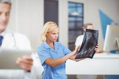 Rayon X de examen de docteur féminin Photographie stock