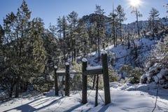 Rayon de soleil 2 d'hiver Photographie stock
