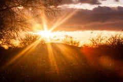 Rayon de soleil de Starburst Image libre de droits