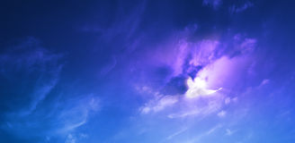 Rayon de soleil pourpre d'oiseau Images libres de droits