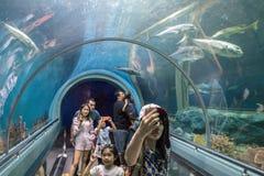 Rayong, TAILANDIA - 9 aprile: Turisti al tunnel acquatico in Th fotografie stock