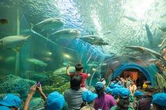 Rayong, TAILANDIA - 20 marzo: Turisti al tunnel acquatico nella t fotografia stock