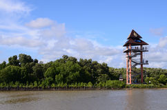 Rayong Thailand synvinkeltorn på Phraen Chedi Klang Nam Mangrove Ecology Learning Center Arkivfoto