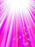 Rayons blancs sur le fond rose illustration de vecteur