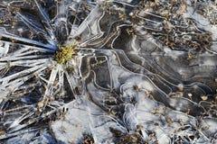 Rayons de glace créer une qualité de rayon de soleil dans un magma congelé photo libre de droits