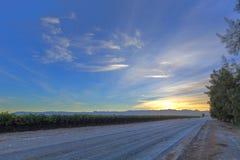 Rayons de soleil de début de la matinée Photographie stock libre de droits