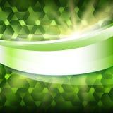 Rayons de soleil rougeoyants verts de fond de label de produit nouveau Photographie stock libre de droits