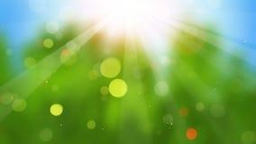 Rayons de soleil sur la boucle sans couture 4k (4096x2304) de fond trouble banque de vidéos
