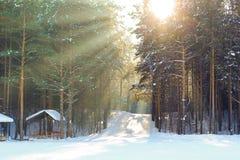 Rayons de Sun Photos libres de droits