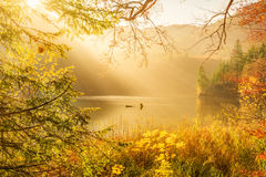 Rayons de Sun et nature d'automne Images libres de droits