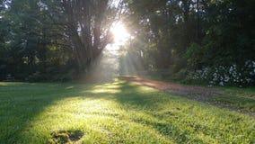 Rayons de Sun de monticules Image stock