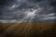 Rayons de Sun traversant des nuages Image stock