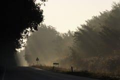 Rayons du soleil Photographie stock libre de droits